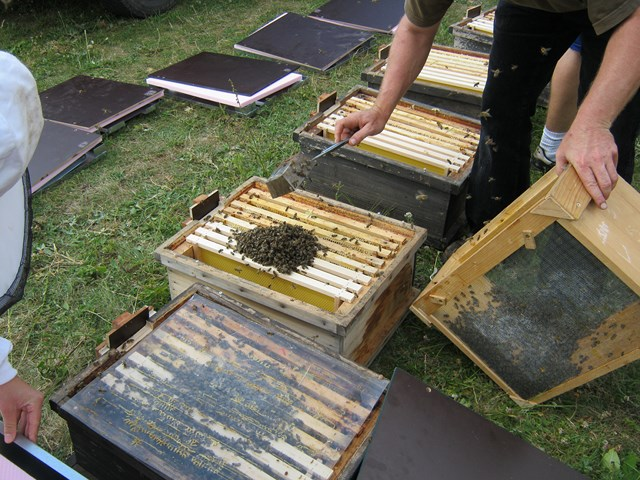 Pic:Beekeeping_2_Starting an experiment_open hives