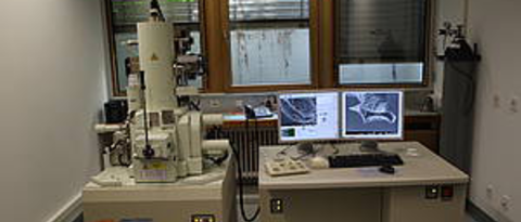 Picture and Link: Electron Microscopes