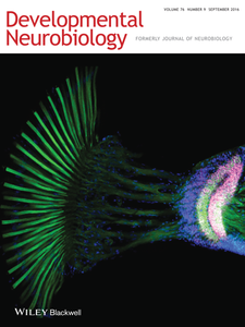 "Cover of the journal ""Developmental Neuobiology"" (2016) Volume 76 Number 9"