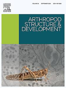 "Cover of the journals ""Arthropod Structure and Development"" (2020) Volume58"