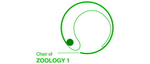 logo: Cell and Developmental Biology