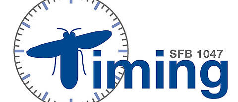 "Logo des Sonderforschungsbereichs ""Insect timing: mechanisms, plasticity and interactions""."