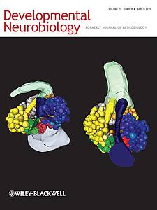 "Cover of the journal ""Developmental Neurobiology (2010) Volume 70 Number 4"""