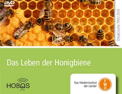 Neuer Bienenfilm für den Unterricht - Biozentrum